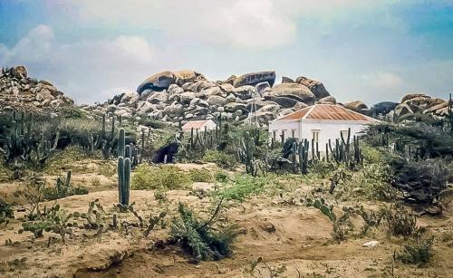 1.996Nos dushi Aruba di antaño