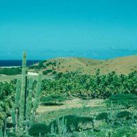 2.559Nos dushi Aruba di antaño